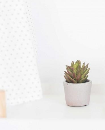Cactus en maceta artifical 1