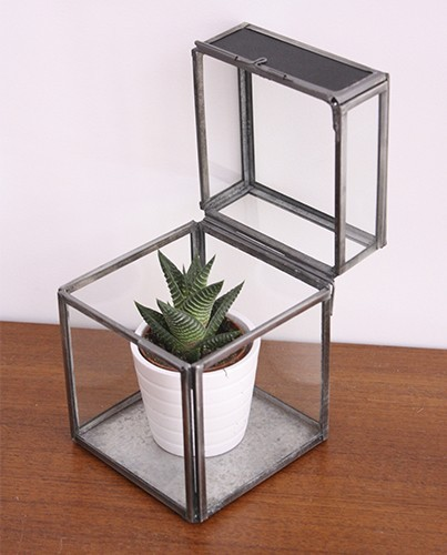 Caja cristal