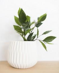 Laurel artificial