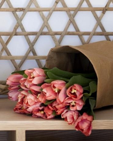 Tulipan coral artificial